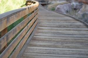 jpg_wooden_walkway